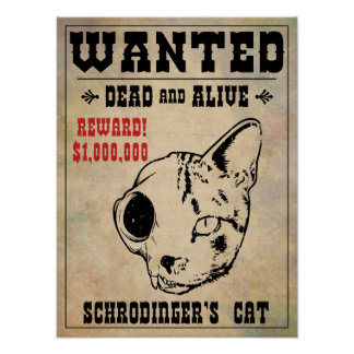 Schrodinger's Cat Wanted II Poster