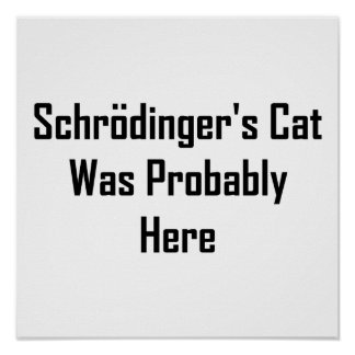 Schrodinger's Cat Was Probably Here Poster