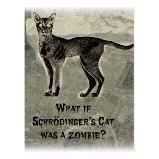Schrodinger Postcards | Zazzle