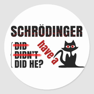 Schrodinger's Dillema Classic Round Sticker