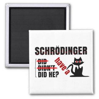 Schrodinger's Dillema Magnets