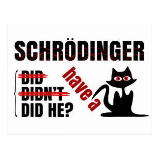 Schrodinger's Dillema Post Cards