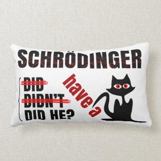 Schrodinger's Dillema Throw Pillow