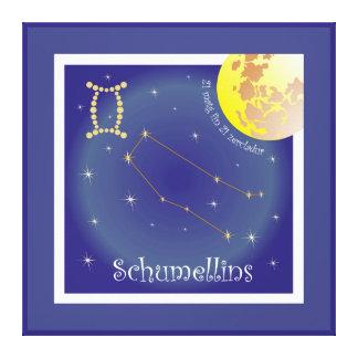 Schumellins 21 matg fin 21 zercladur canvas