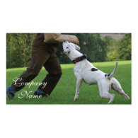 Schutzhund American Bulldog Double-Sided Standard Business Cards (Pack Of 100)
