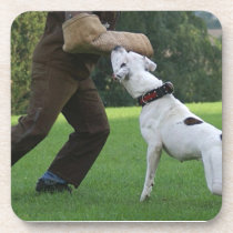 Schutzhund American Bulldog Drink Coaster