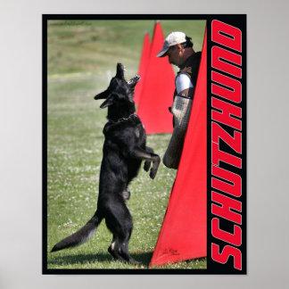 Schutzhund German Shepherd Dog Poster