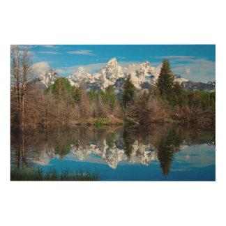 Schwabacher's Landing, Grand Teton Wood Print