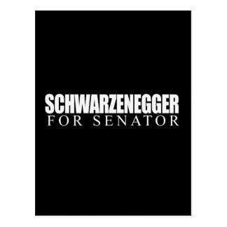 Schwarzenegger for Senator 2010 Postcard