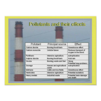 Science,  Chemistry, Pollutants and their effects Poster