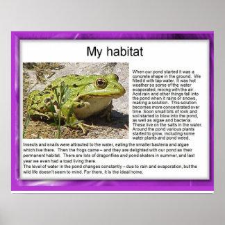 Science, Ecology, Garden Pond habitat Poster
