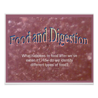 Science, Food and Digestion Print