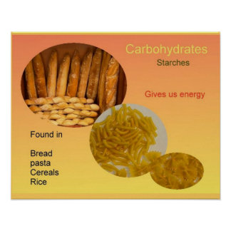 Science Food, Nutrition, Carbohydrates Poster
