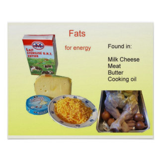 Science, Food Nutrition, Fats Print