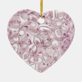 Science Parasite Ceramic Ornament