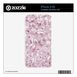 Science Parasite Decal For The iPhone 4S