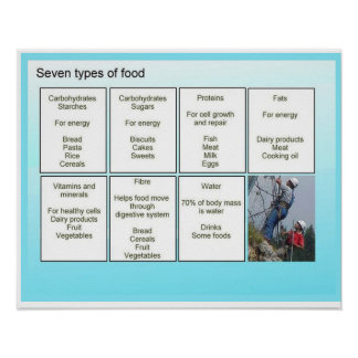 Science, Seven types of food Poster
