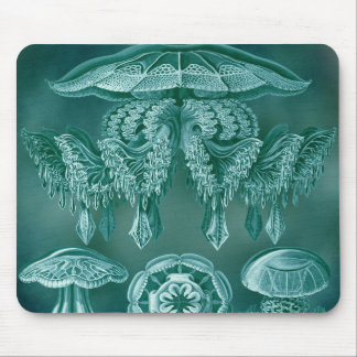 Scientific Jelly Vintage Illustration Mouse Pad