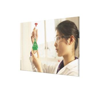 Scientist examining liquid in beaker canvas print