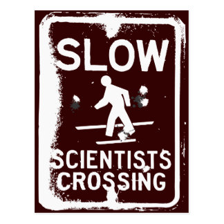Scientists Crossing Postcard