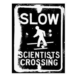 Scientists Crossing Postcard