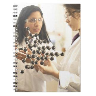 Scientists examining molecular model notebook