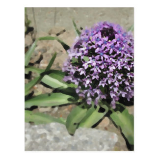 Scilla. Pretty purple flower. Postcard