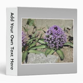 Scilla. Purple flower in a garden. On Gray. Binder