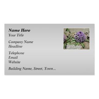 Scilla. Purple flower in a garden. On Gray. Business Card