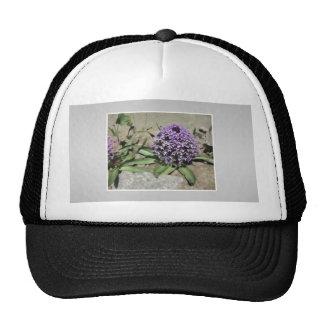 Scilla. Purple flower in a garden. On Gray. Trucker Hat
