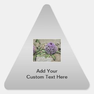 Scilla. Purple flower in a garden. On Gray. Triangle Sticker