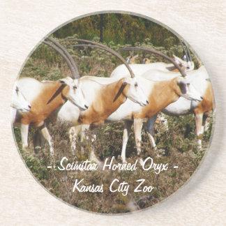 Scimitar Horned Oryx Coaster