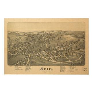 Scio Harrison County Ohio in 1899 Wood Print