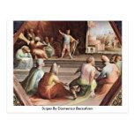 Scipio By Domenico Beccafumi Post Card