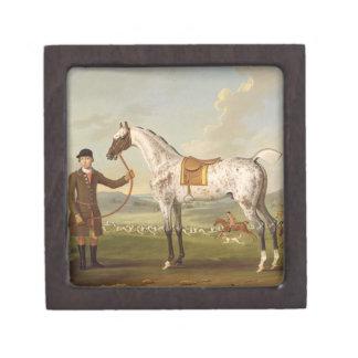 Scipio, Colonel Roche's Spotted Hunter, c.1750 (oi Jewelry Box