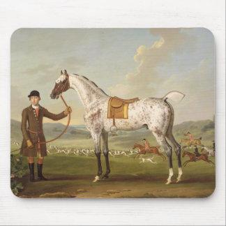 Scipio, Colonel Roche's Spotted Hunter, c.1750 (oi Mouse Pad