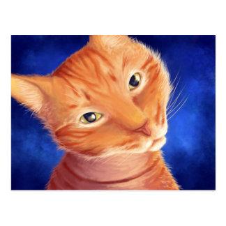 Scipio Kitten Postcard
