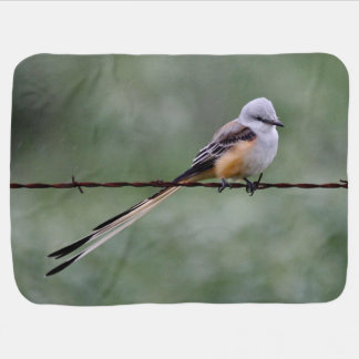 Scissor-tailed Flycatcher perched on barbed wire Baby Blanket