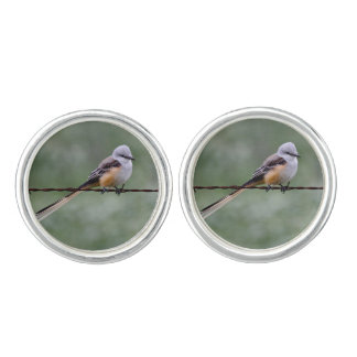 Scissor-tailed Flycatcher perched on barbed wire Cufflinks