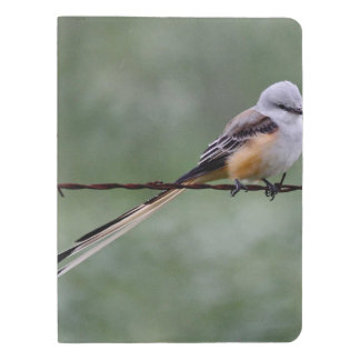 Scissor-tailed Flycatcher perched on barbed wire Extra Large Moleskine Notebook