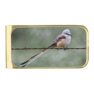 Scissor-tailed Flycatcher perched on barbed wire Gold Finish Money Clip