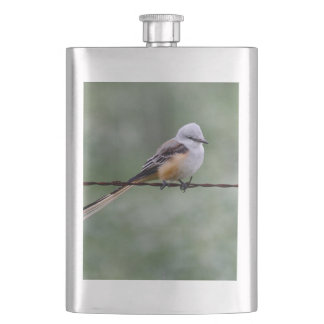 Scissor-tailed Flycatcher perched on barbed wire Hip Flask
