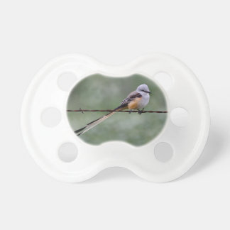 Scissor-tailed Flycatcher perched on barbed wire Pacifier