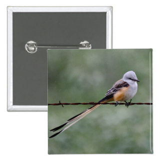 Scissor-tailed Flycatcher perched on barbed wire Pinback Button