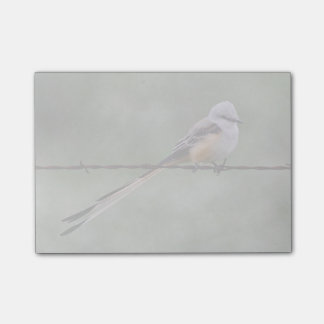 Scissor-tailed Flycatcher perched on barbed wire Post-it® Notes