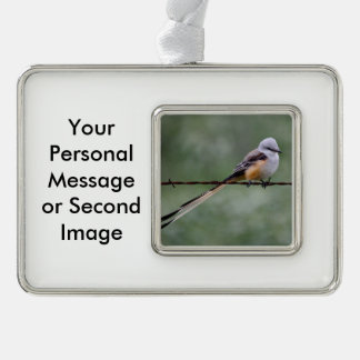Scissor-tailed Flycatcher perched on barbed wire Silver Plated Framed Ornament