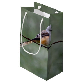 Scissor-tailed Flycatcher perched on barbed wire Small Gift Bag