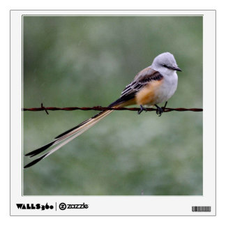 Scissor-tailed Flycatcher perched on barbed wire Wall Sticker