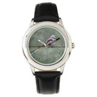 Scissor-tailed Flycatcher perched on barbed wire Wristwatch