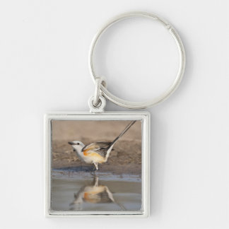 Scissor-tailed Flycatcher reflected in pond Keychain
